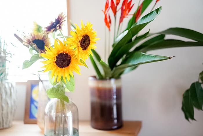 ひまわりだけで様々な種類を花瓶にいれて飾るのは、この季節ならではのシンプルな楽しみ方です。夏の期間はお花屋さんでもひまわりのフェアをやるところも多いので、そういうお店でいろんな種類を見つけてみるといいかもしれません。ひまわりは前向きに花がついているので、いろんな方向から楽しめるように向きを調整して、高さを少しずつ変えると飾りやすいですよ!