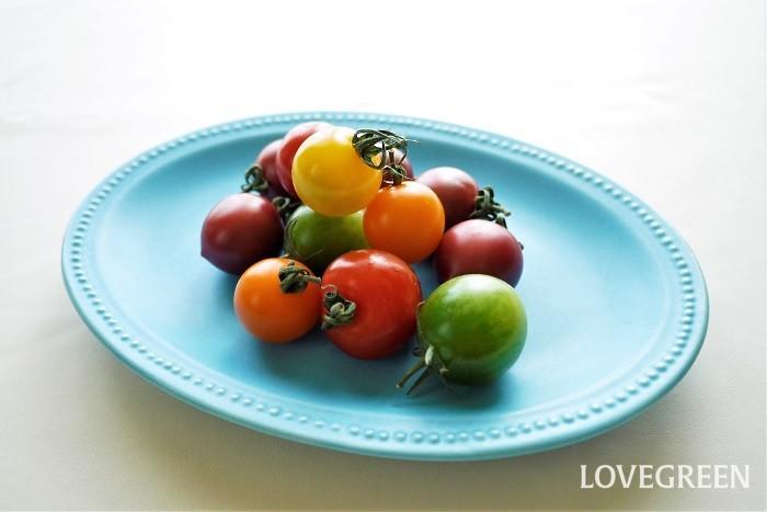 赤の他に黄色やオレンジ、スモーキーな紫色などの珍しい色のトマトです。