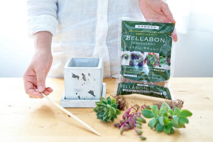 【多肉植物にオススメ】土の代わりになるヤシの実チップ「ベラボン・サキュレント」