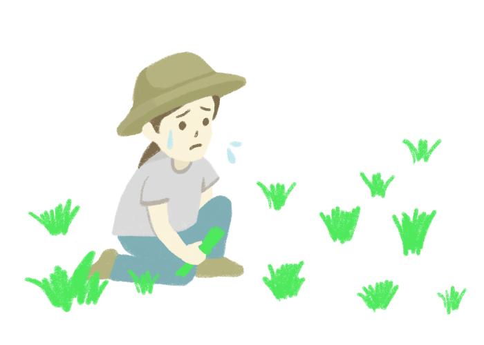 4月頃~夏にかけて、毎年庭の雑草に頭を悩ませる人も多いのではないでしょうか? 雑草は生長スピードがとても早く、気がつけば庭全体に広がってしまっていますよね。また、抜いても抜いても途中で切れて少しでも根が残っていると、またあっという間に増えてしまう......。まさにイタチごっごです。