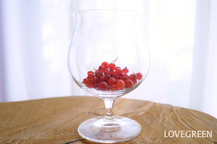 ベリー類の代表的な食べ方を紹介します。  生食 ブラックベリーやラズベリー、イチゴ、ジューンベリー、桑、ブルーベリー、ヤマモモ、ナワシロイチゴなどは生食が可能です。  まずは摘みたてのフレッシュなベリーをそのまま楽しんでください。  ジャム ツルコケモモやグーズベリーのように酸味が強いものは砂糖を多めに加えて煮詰めてジャムにすると食べやすくなります。出来上がったジャムはアイスにかけたりケーキに添えたりして楽しめます。  果実酒 ガマズミのような酸味が強く水分が多いものは果実酒に向いています。ホワイトリカーと砂糖で漬け込めば、色のきれいな果実酒を楽しめます。  冷凍 取れすぎたベリー類は種類によっては冷凍保存もできます。イチゴやブラックベリー、ラズベリー、ブルーベリーなどは冷凍が可能です。冷凍したベリー類は解凍してもフレッシュの瑞々しさは損なわれているので、ジャムなどにして楽しみます。