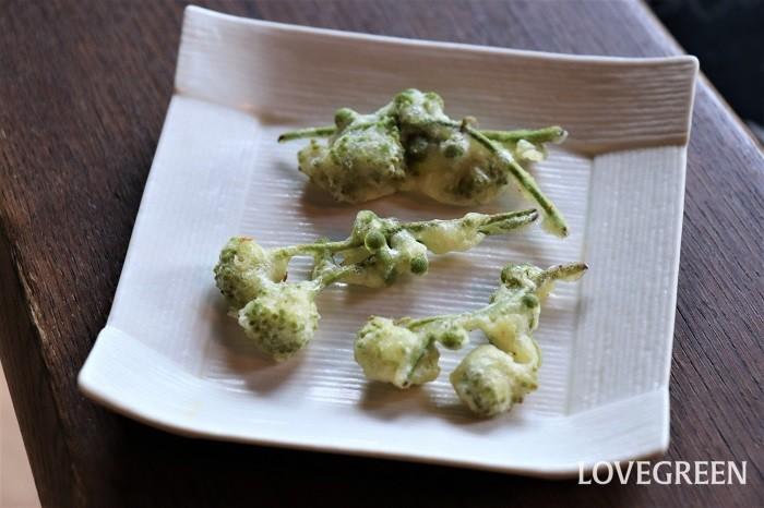 これは、山うど(山独活)の蕾の天ぷらです。蕾の部分はぷつぷつした食感で、しっかりとウドの味がします。花が咲く季節にしか味わえない貴重な天ぷらです。