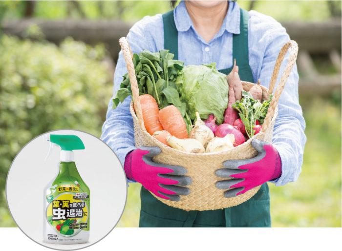 幅広い野菜・害虫に一年中使えるベニカAスプレー