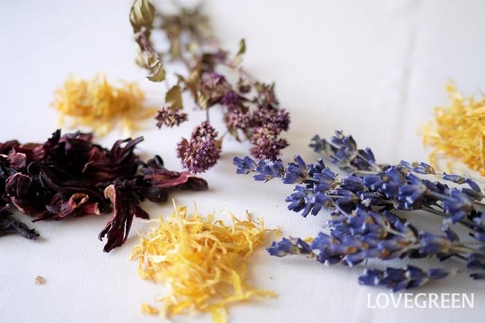 人気のハーブティーを、植物の名前や期待できる効果効能と共に紹介します。  カモミール 学名:Chamaemelum nobile(ローマンカモミール)、Matricaria chamomilla(ジャーマンカモミール) 科名:キク科 使用部位:花 効果効能:カモミールティーには消化器官の不調の改善、不安を和らげ安眠を促す効果が期待できると言われています。