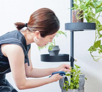 植物を「もっとインテリアと馴染ませたい」と思うように― CASE:1  LOVEGREEN STORE バイヤー/井上愛子さん
