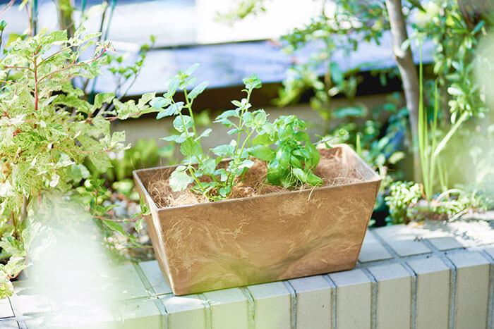 ③セットした苗を寄せ植えにもできますよ♪ プランターの底に鉢底石を入れて高さを調整し、表面をマルチングで覆えば見た目もばっちり!