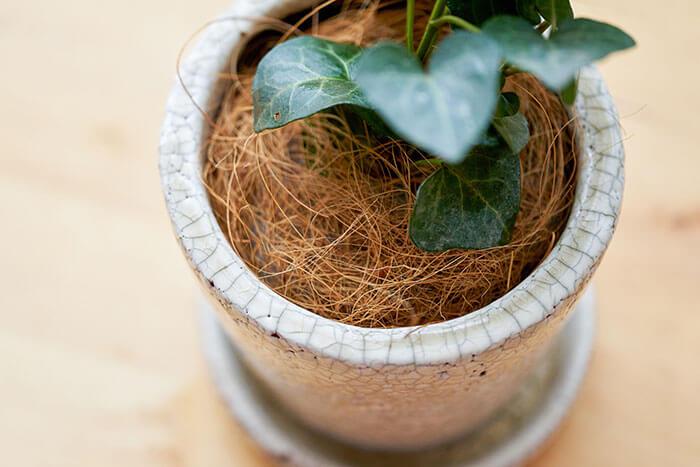 表面の見た目が気になるようなら、ヤシ繊維や小石などの好みのマルチング材を表面に敷けばばっちり!